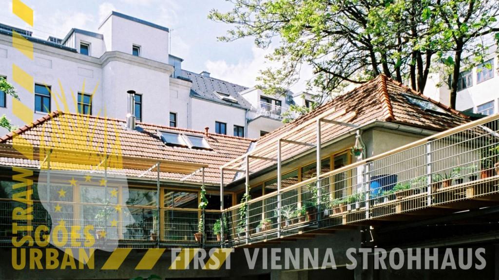 ESBG-banner-vienna1