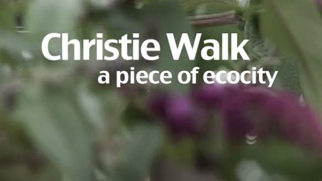 christiewalk