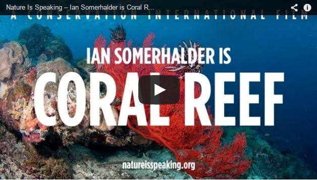 ian-somerhalder-coral-reef