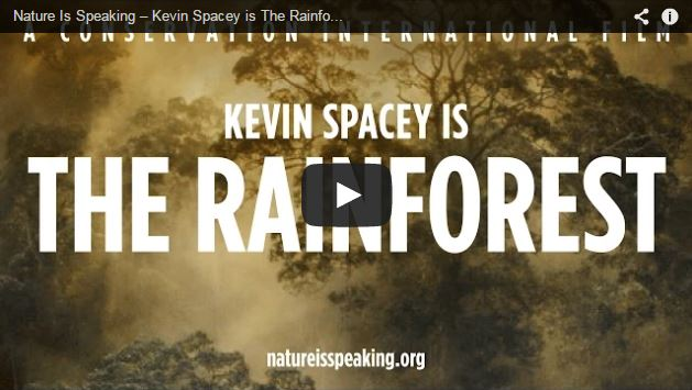 kevin-spacey-rainforest