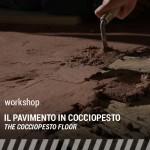 copertina-w_irene-PAV-COCCIO